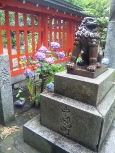 水鏡神社の紫陽花と狛犬
