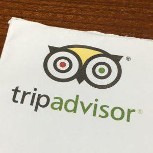 OWL or tripadvisor