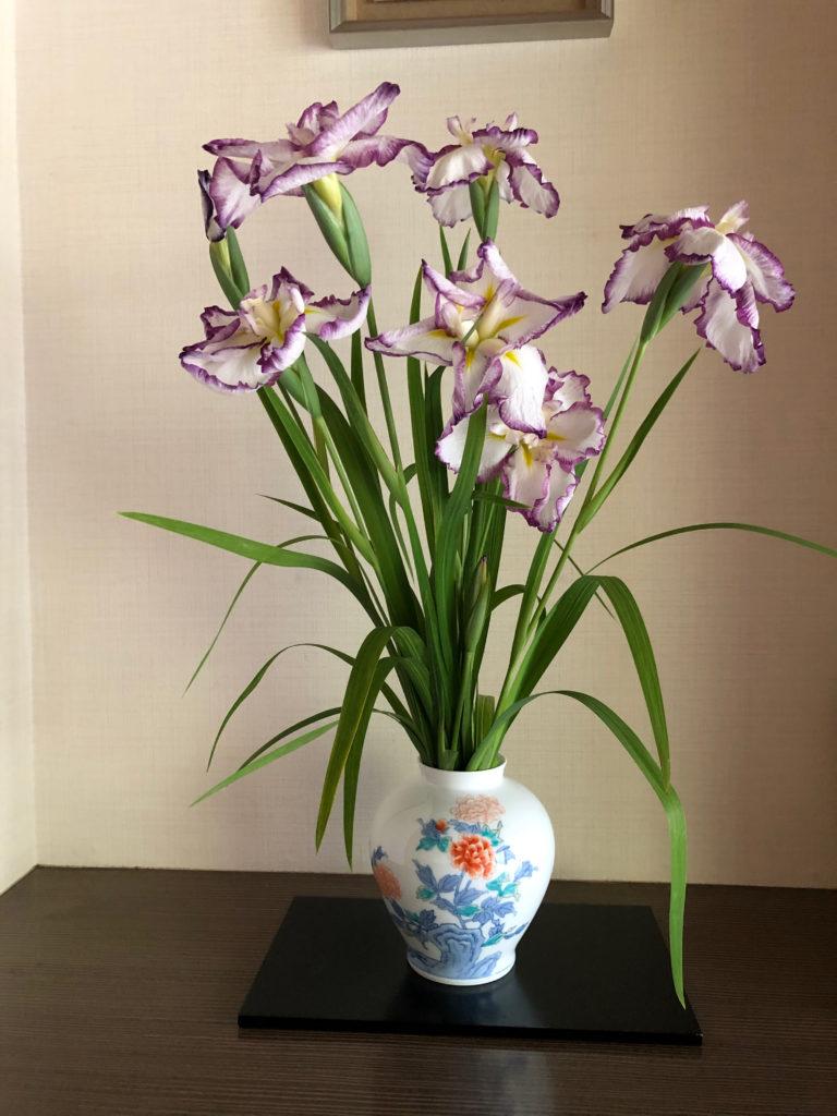 玄関床の花菖蒲