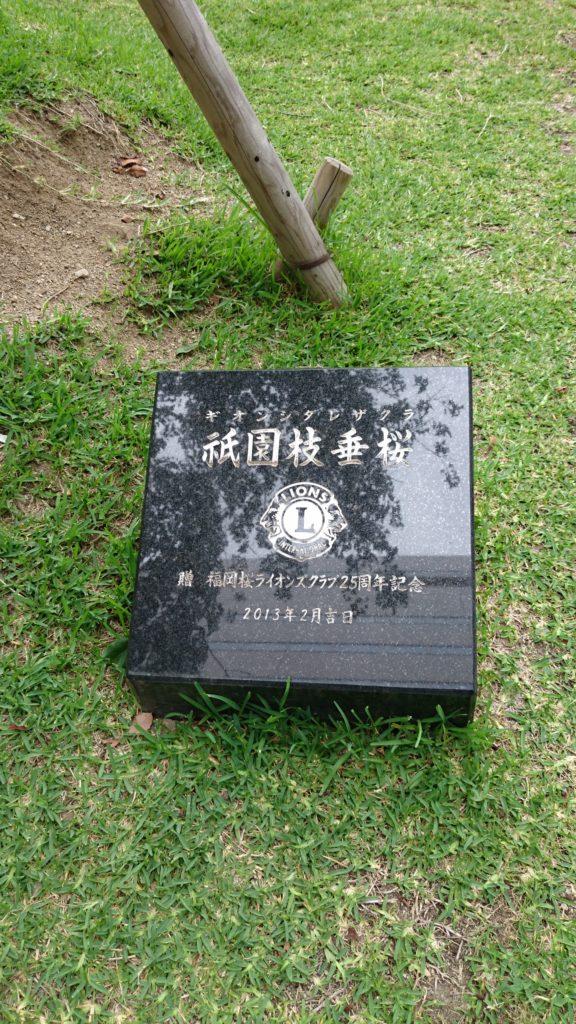 警固公園の御影石